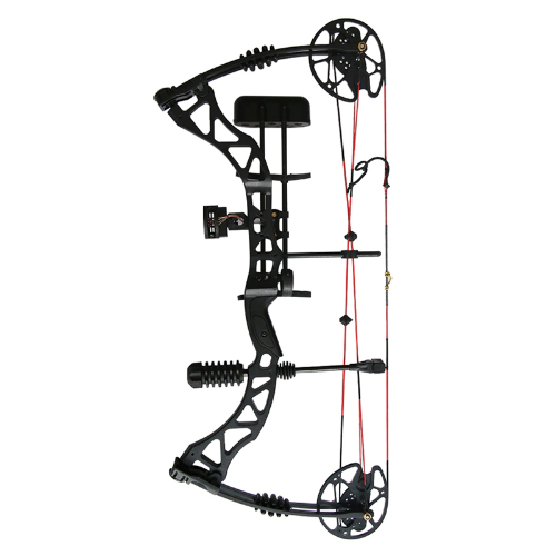 Archery Compound Bow Aliexpress